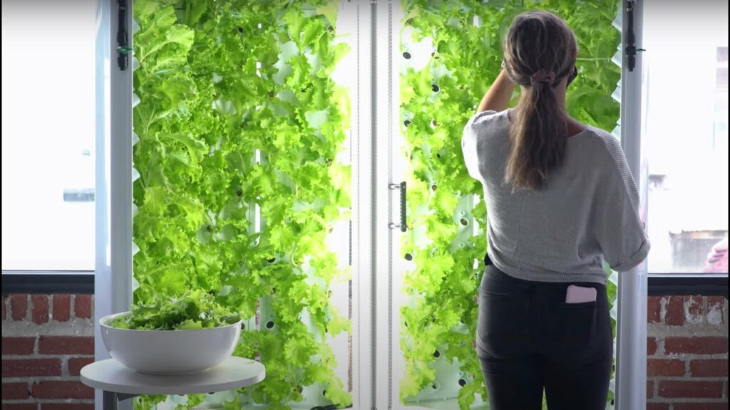 Vertical Farming Is The Future of Food Production Vertical Farming is more efficient but will it replace traditional farming?